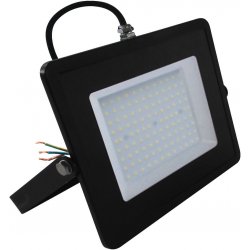 LEDFS-100/WS FOCO LED, ˜...